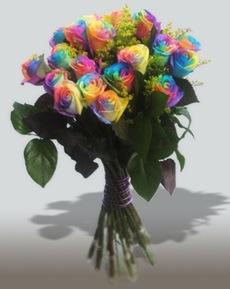 rosa colorida2