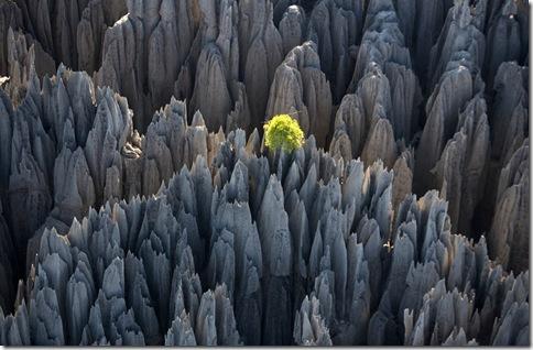 Tsingy-de-Bemaraha[1]