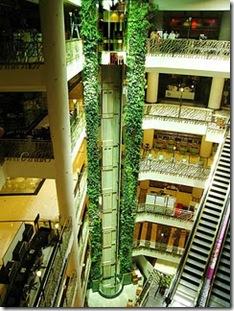 verticalgarden08
