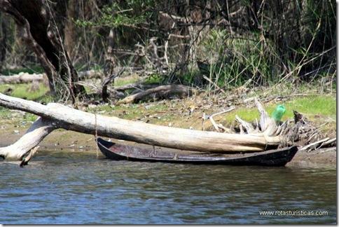 canoa típica